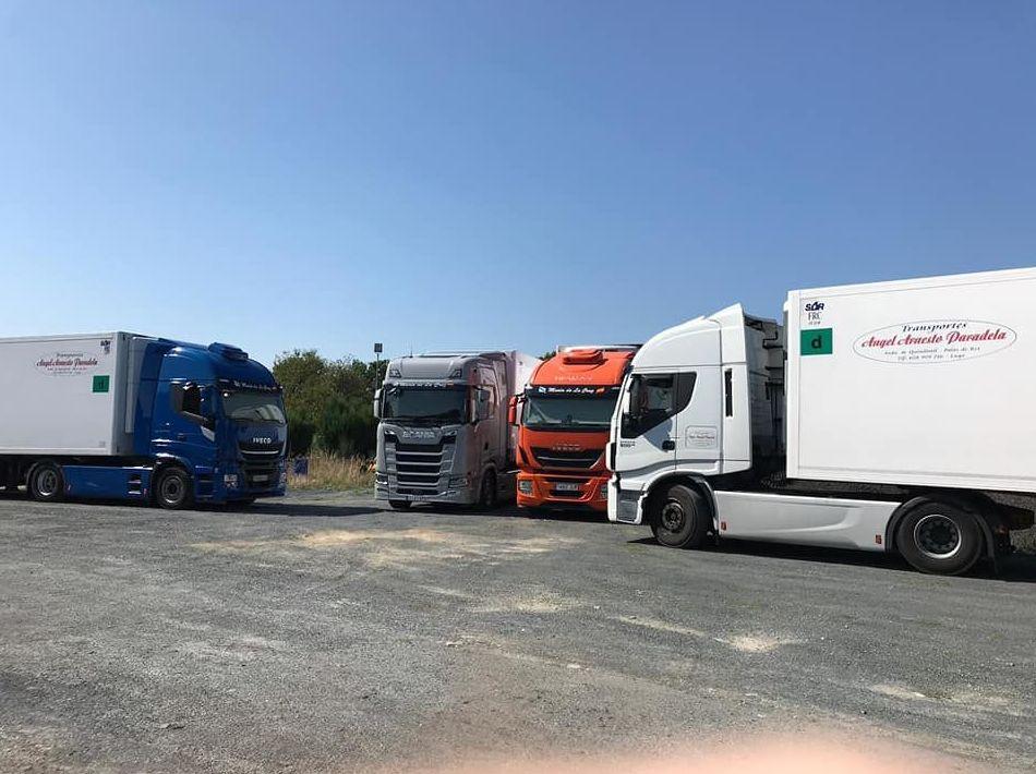 Foto 4 de Transportes frigoríficos en Palas de Rei | Trans. Armesto Arango, S. L.