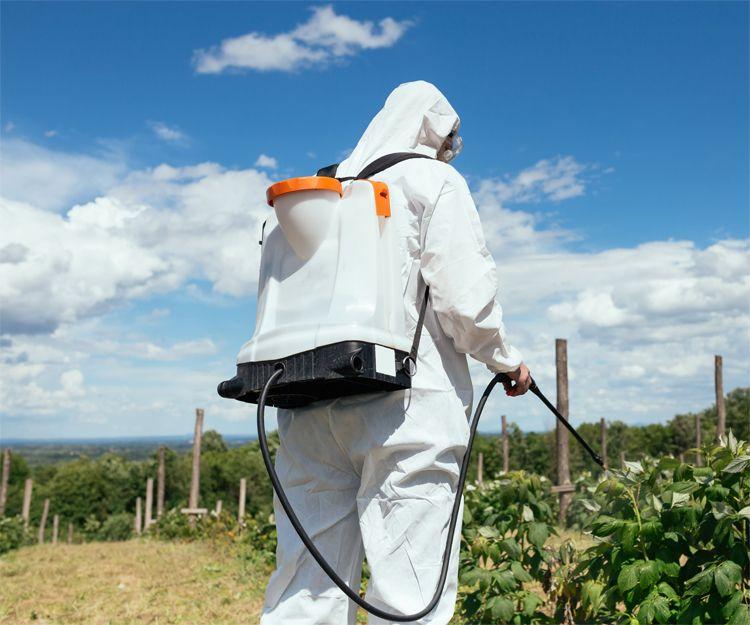 Asesoramiento fitosanitario de agricultura ecológica