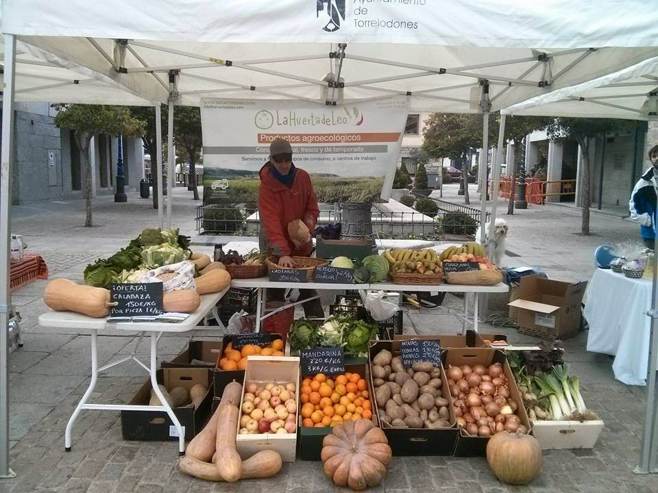 Excelente opción para comprar verdura y fruta ecológica en Latina