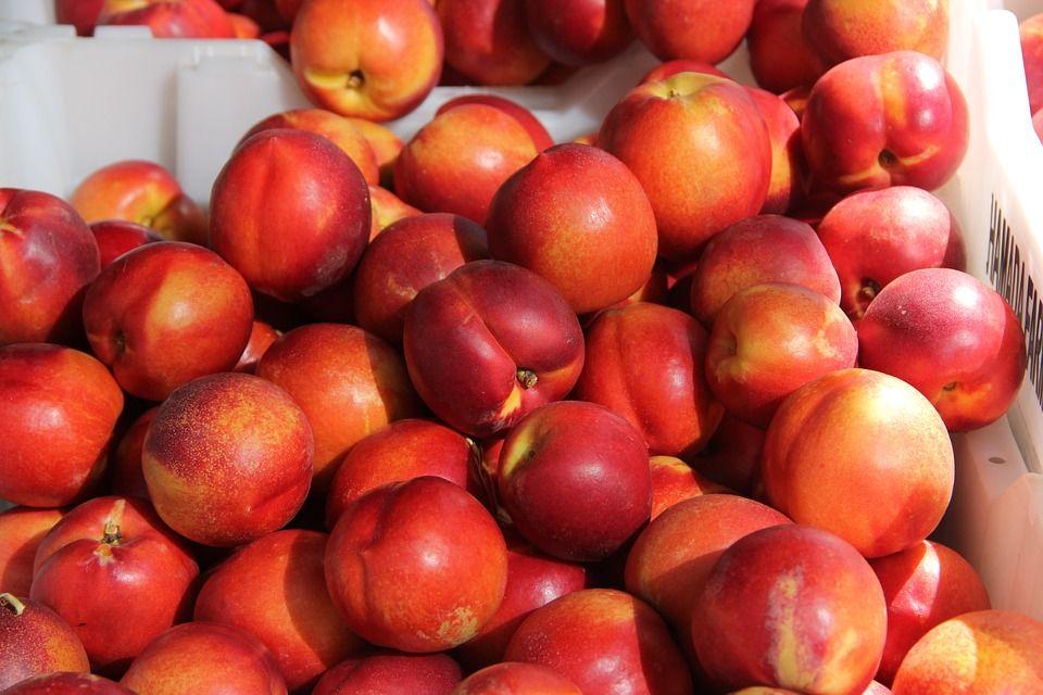 Nectarina: Productos de La Huerta de Leo