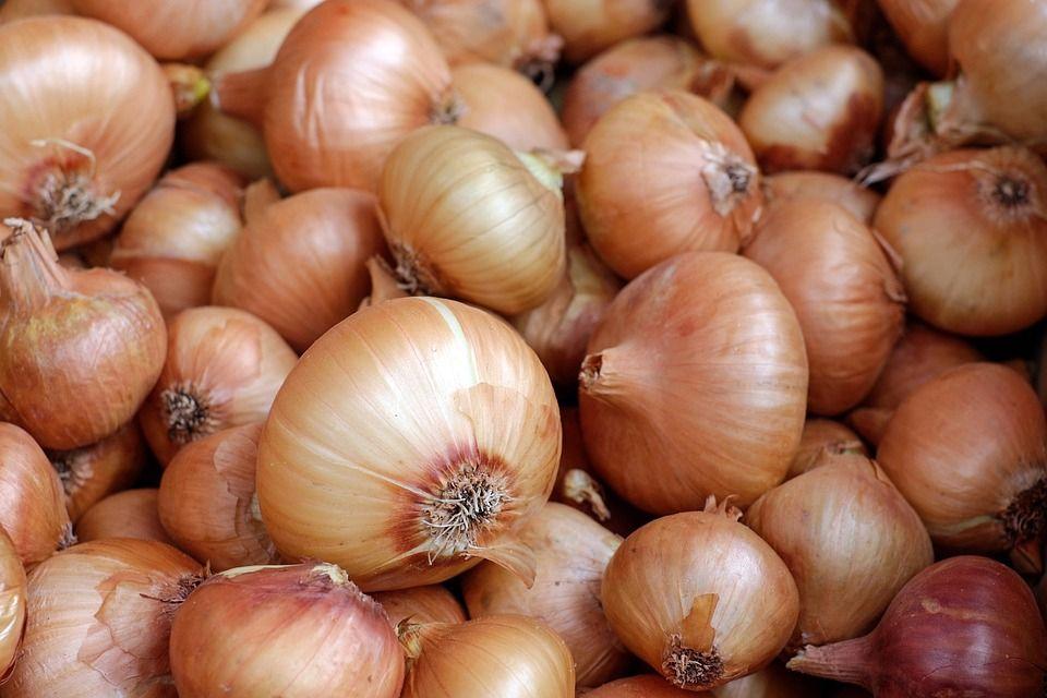 Cebollas: Productos de La Huerta de Leo