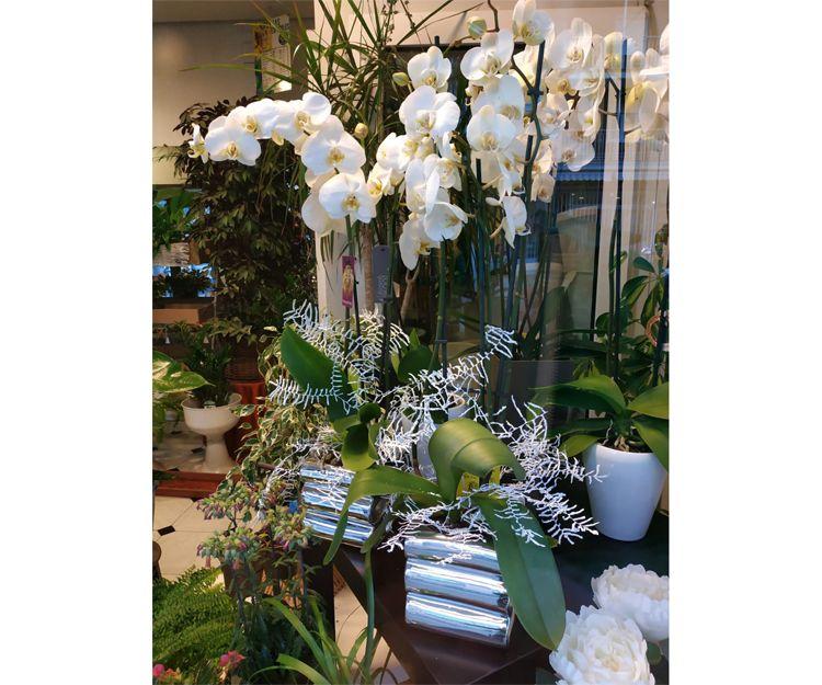 Centros de flores naturales en Madrid
