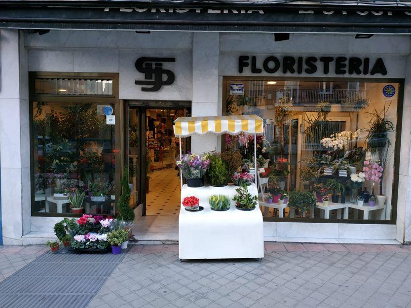 Ramos de flores naturales en Madrid