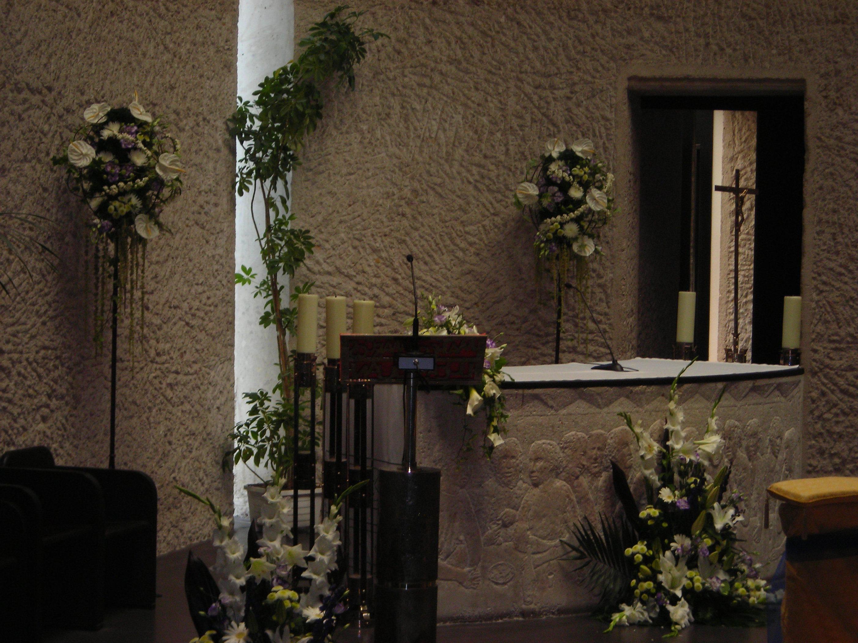Plantas naturales y artificiales. Flores preservadas. Decoración