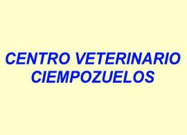 Foto 2 de Veterinarios en Ciempozuelos   Centro Veterinario Ciempozuelos
