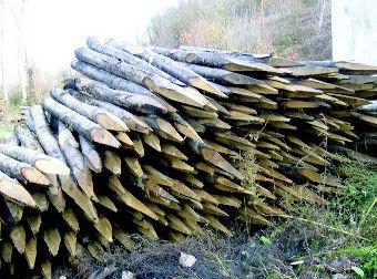 Estacas de madera