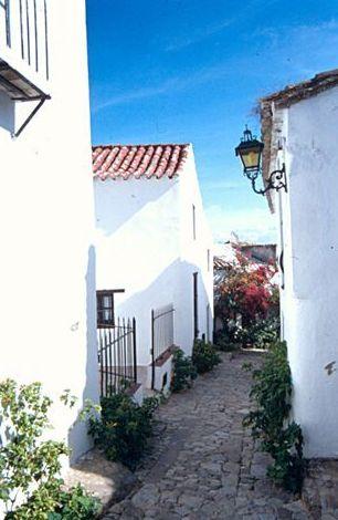 P. Natural Los Alcornocales: ¿Qué ofrecemos? de Viajes Rural Andalus