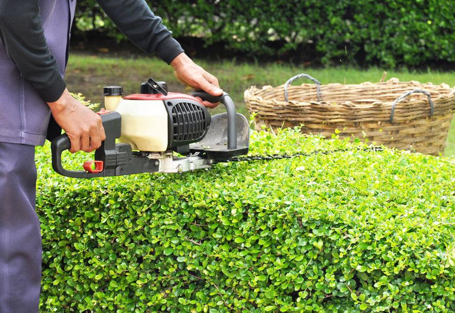 Empresa de mantenimiento de jardines.