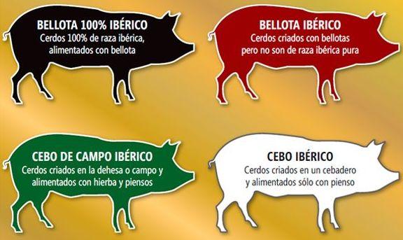 cerdo_iberico
