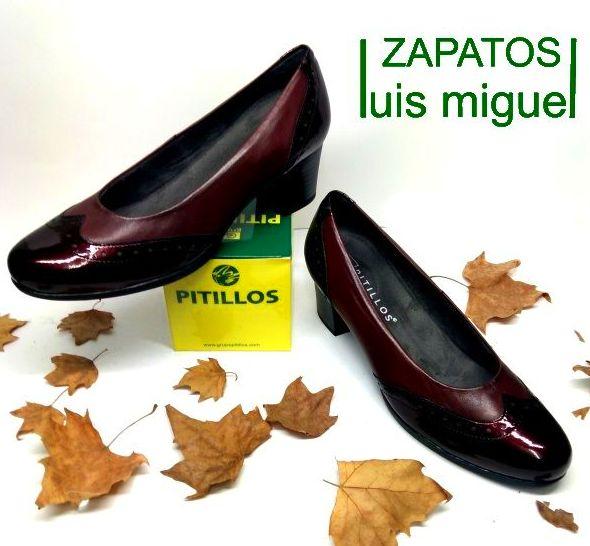 zapato de salon pitillos: Catalogo de productos de Zapatos Luis Miguel