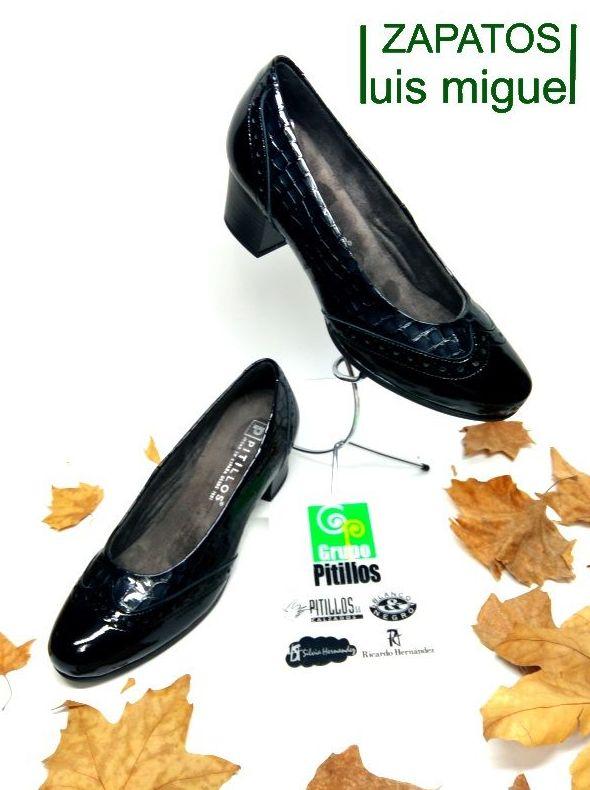 salon charol pala vega: Catalogo de productos de Zapatos Luis Miguel