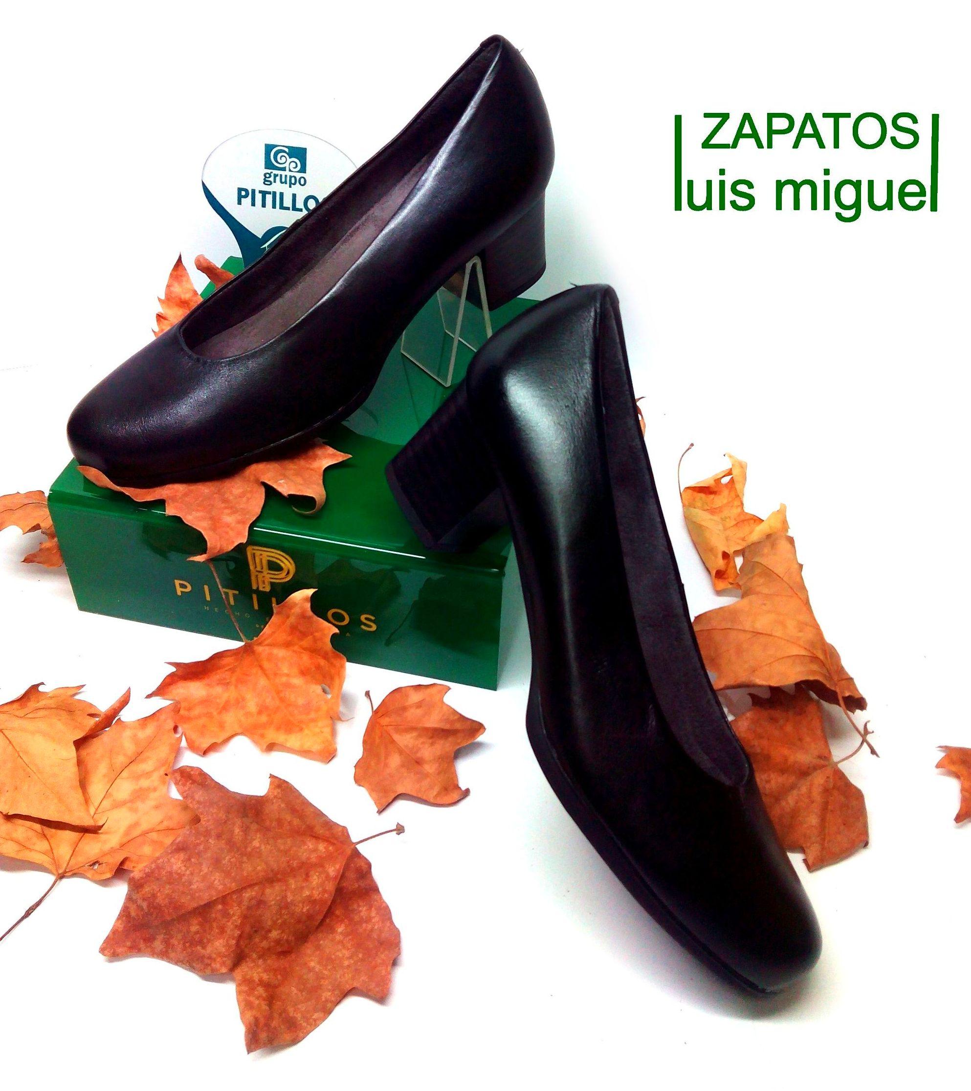 zapato de salon: Catalogo de productos de Zapatos Luis Miguel