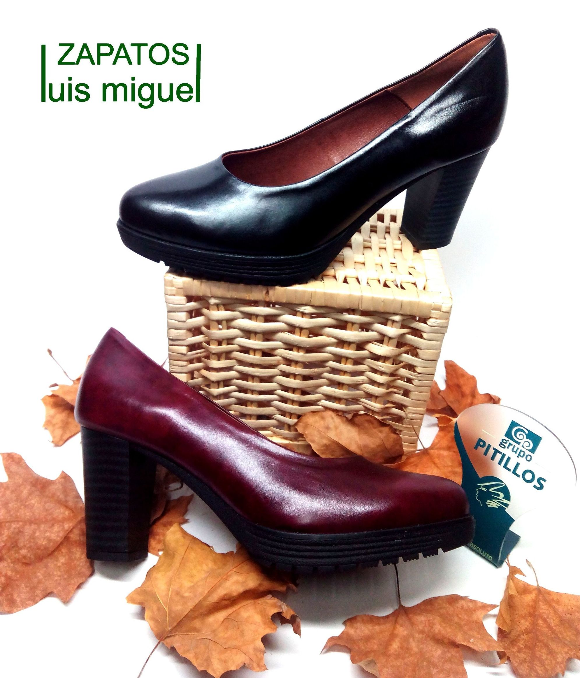 zapatos salon de tacon alto: Catalogo de productos de Zapatos Luis Miguel