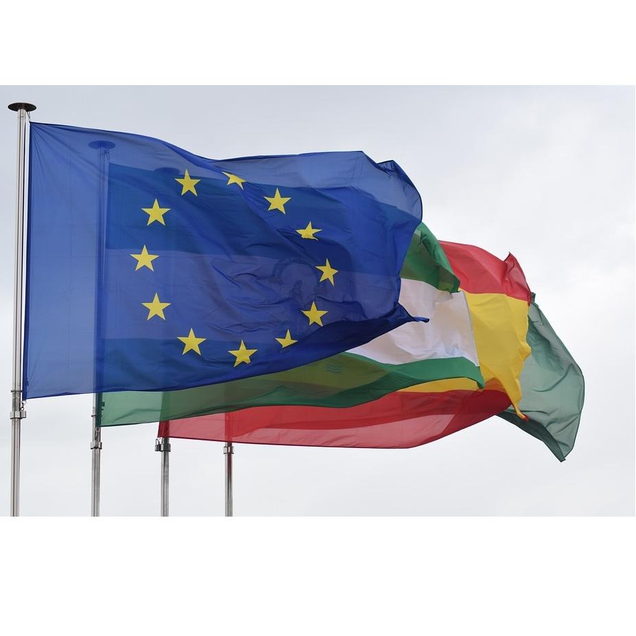 Banderas de embajadas: Servicios de tintorería de Tintorería Belina