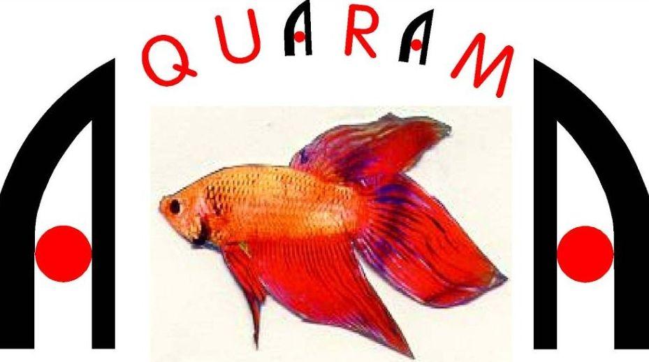 Outlets / Segunda mano: Productos de Aquarama