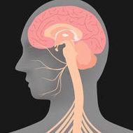 Acupuntura para la parálisis facial o parálisis de cara