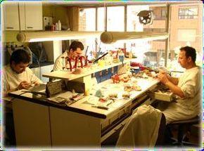 Profesionales de la ortodoncia