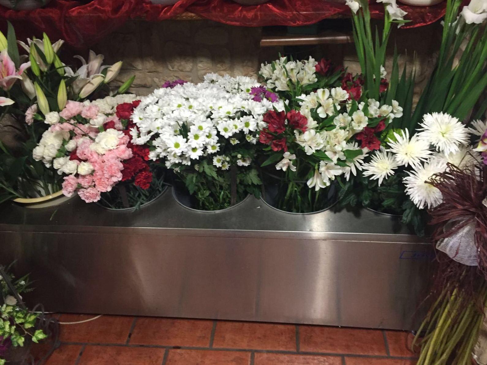 Viveros Hortplant, venta de flores