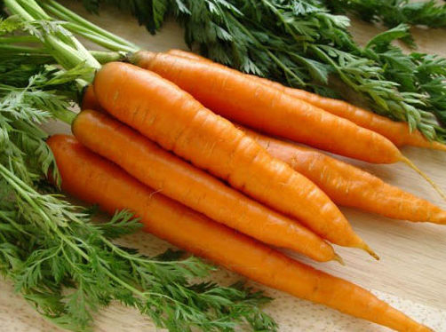 Hortalizas y verduras Segovia
