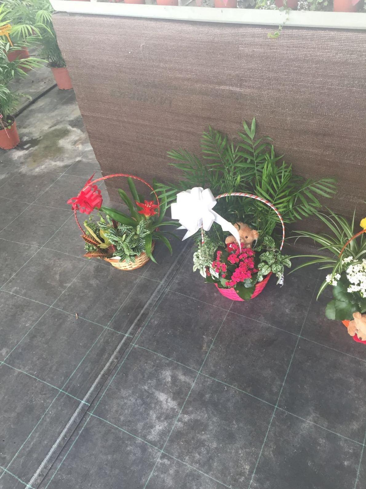 Venta de centros de flores decorativos
