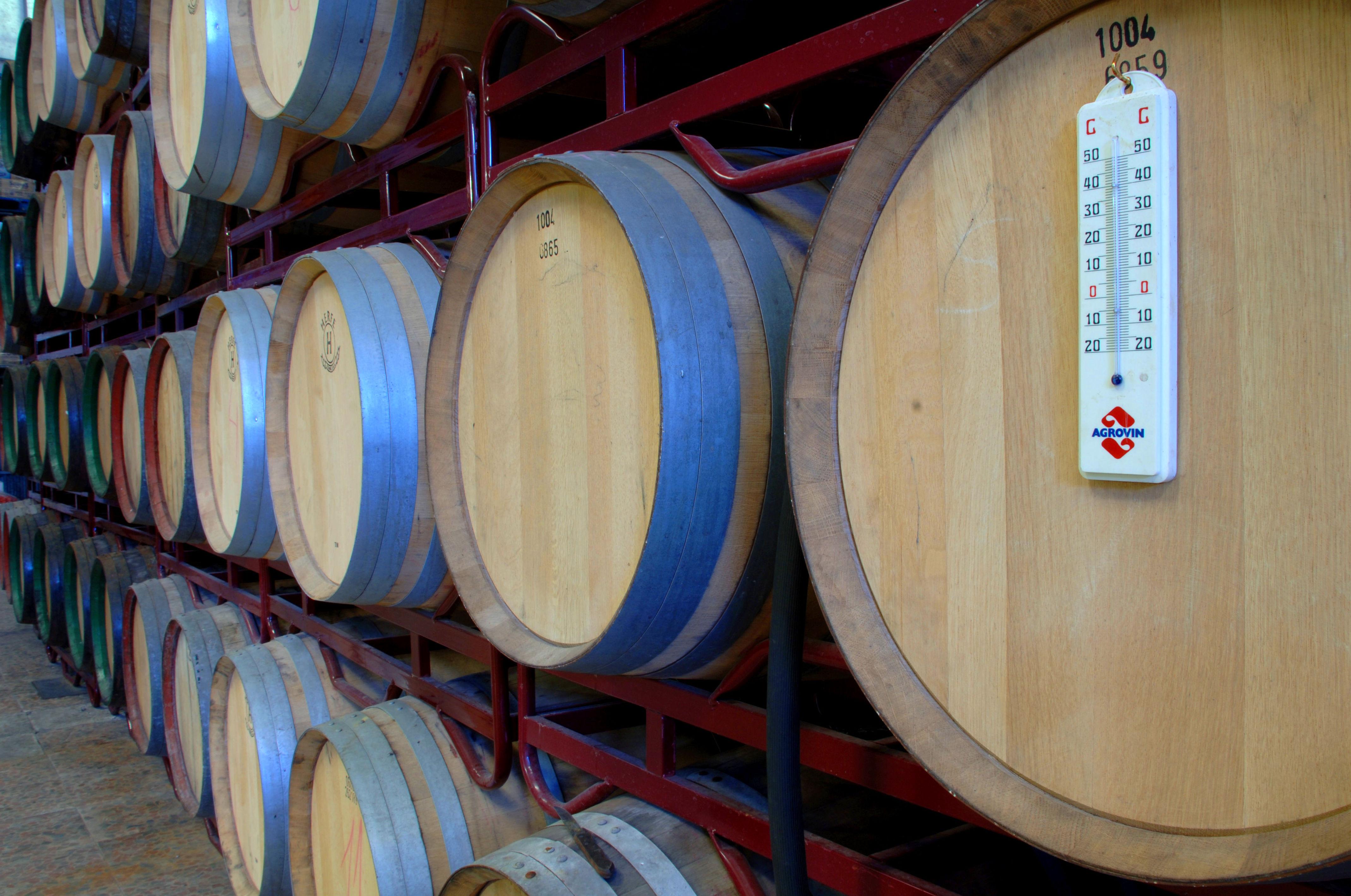 Foto 12 de Venta de vinos con denominación de origen Mondejar en Mondéjar | Bodegas Mariscal