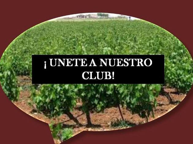 Foto 50 de Venta de vinos con denominación de origen Mondejar en Mondéjar | Bodegas Mariscal