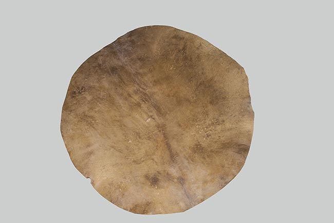Pieles y/o correas para bombo y tambor: Productos de piel de Pieles Domingo