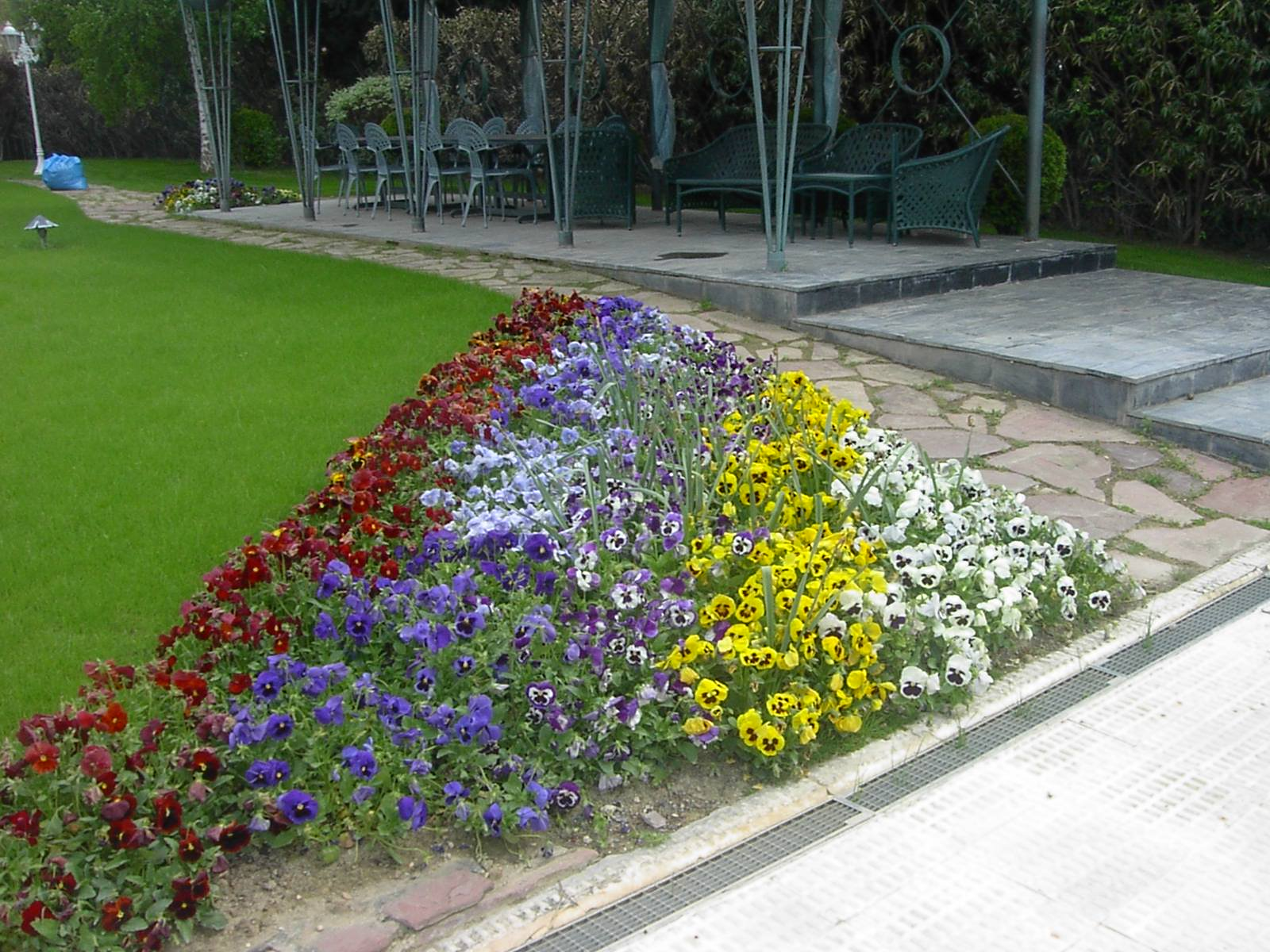Foto 15 de Jardines (diseño y mantenimiento) en Huesca | Jardinería Belsué