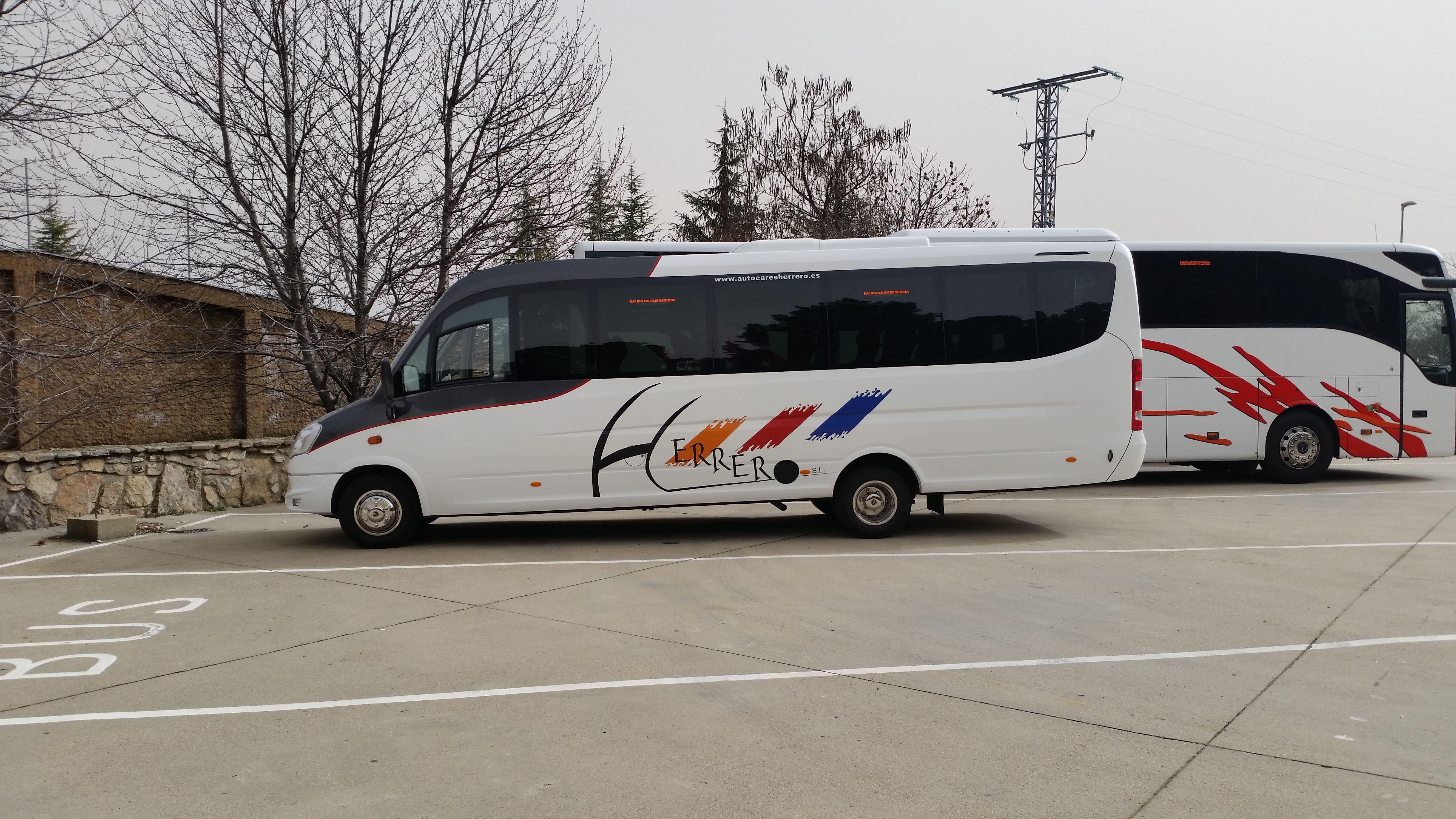 Gran variedad de autobuses