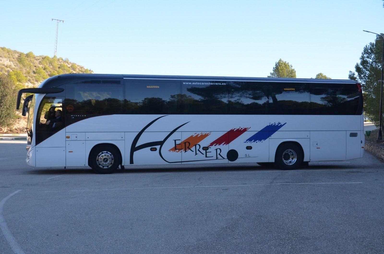 Autocares de empresas en Palencia nuevos