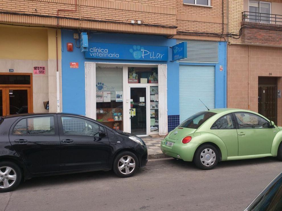 Foto 6 de Veterinarios en Albacete | Clínica Veterinaria El Pilar
