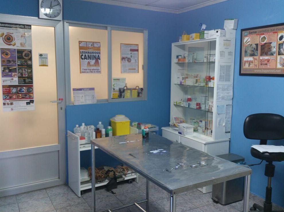 Foto 12 de Veterinarios en Albacete | Clínica Veterinaria El Pilar