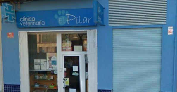 clinica veterinaria en Albacete