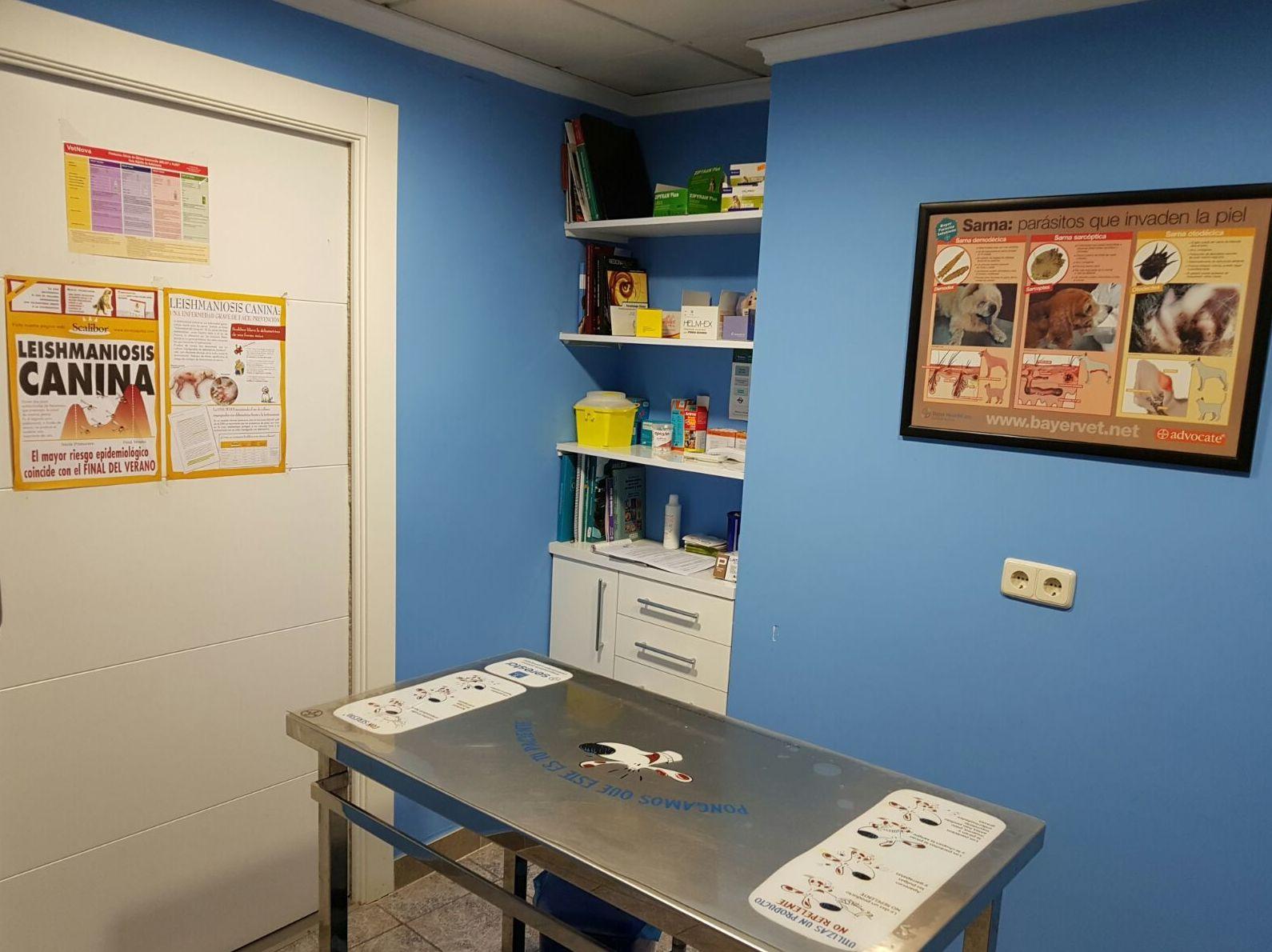 Foto 7 de Veterinarios en  | Clínica Veterinaria El Pilar