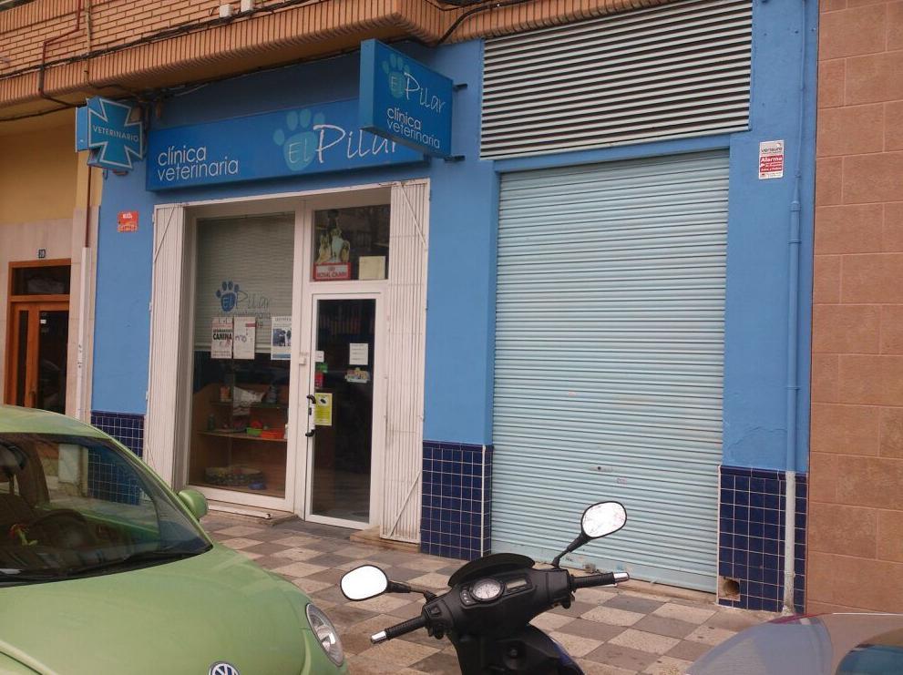 Foto 8 de Veterinarios en Albacete | Clínica Veterinaria El Pilar