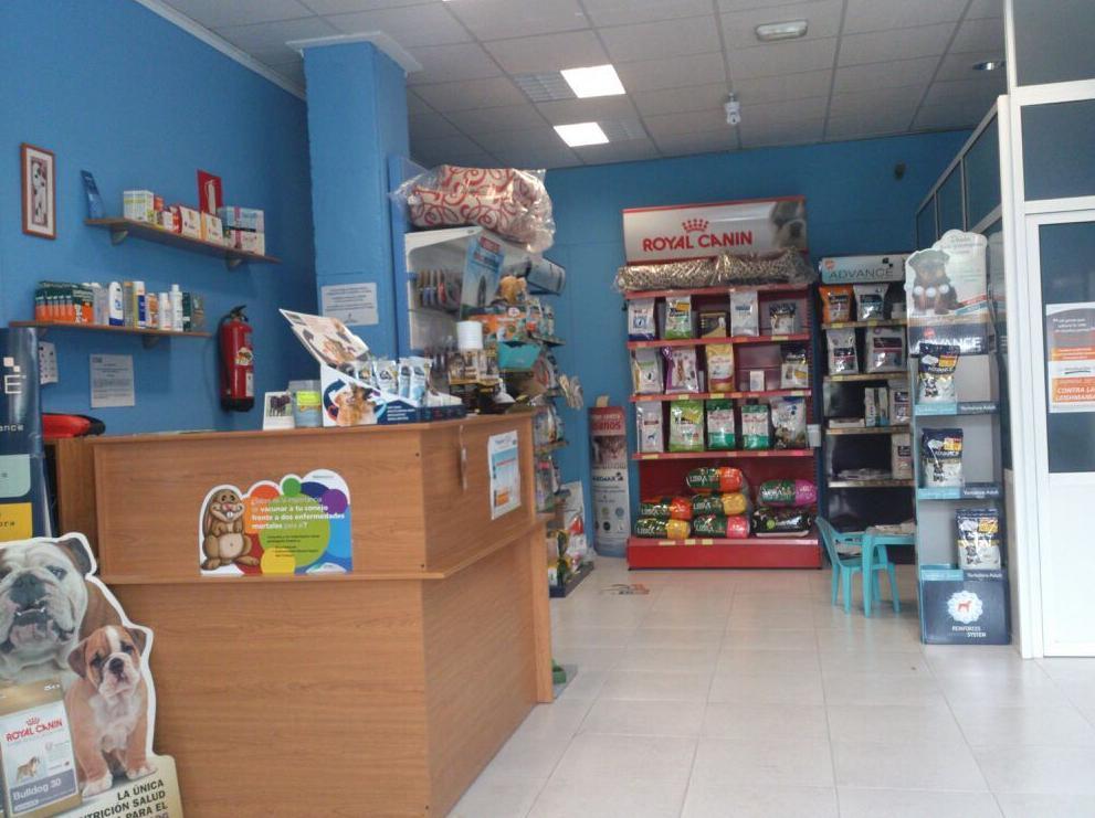 Foto 9 de Veterinarios en Albacete | Clínica Veterinaria El Pilar