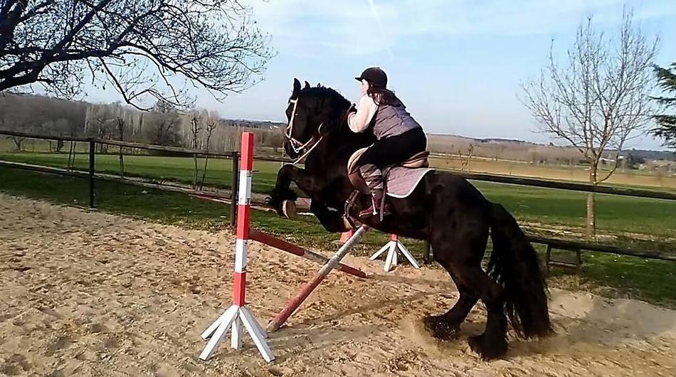 Zona de saltos a caballo