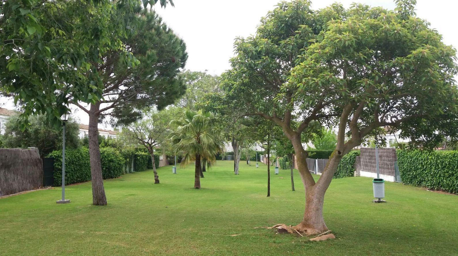 Mantenimiento jardines de comunidades en Cadiz