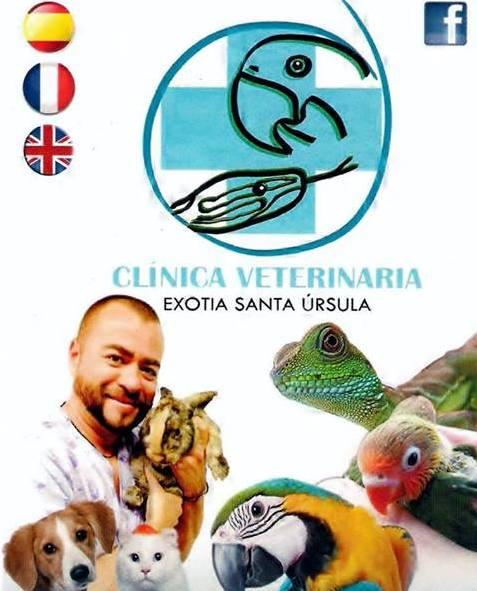 Foto 10 de Veterinarios en  | Clinica Veterinaria Exotia Santa Ursula