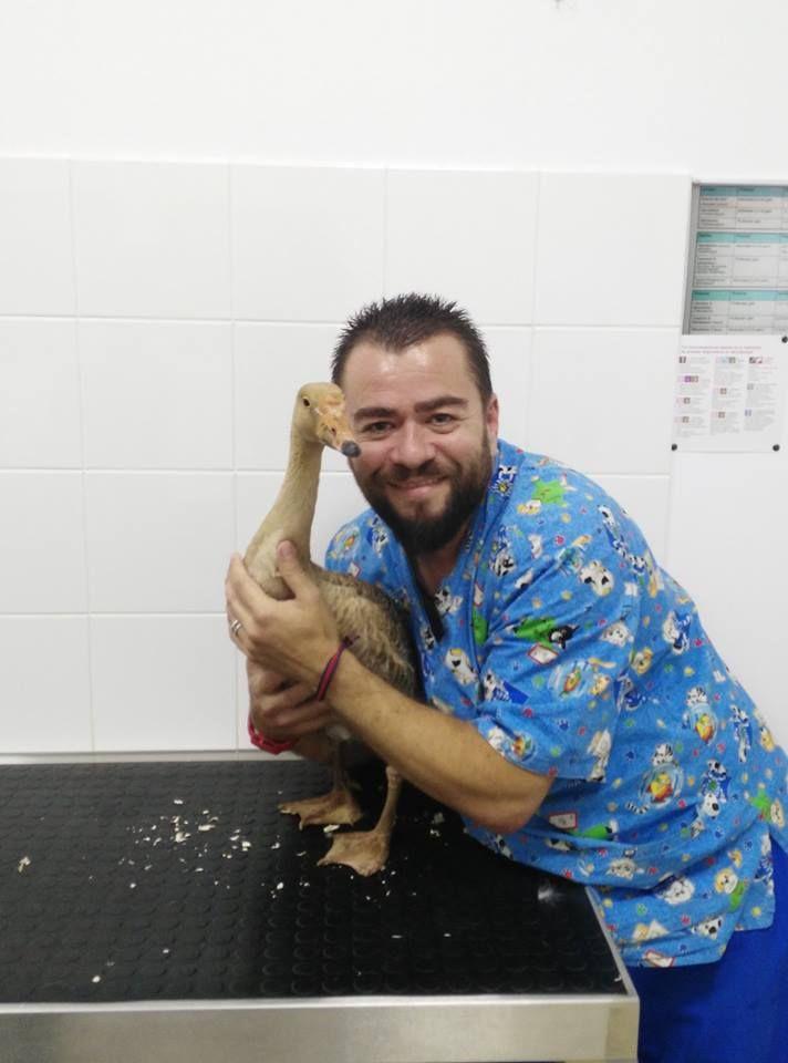 Foto 5 de Veterinarios en  | Clinica Veterinaria Exotia Santa Ursula