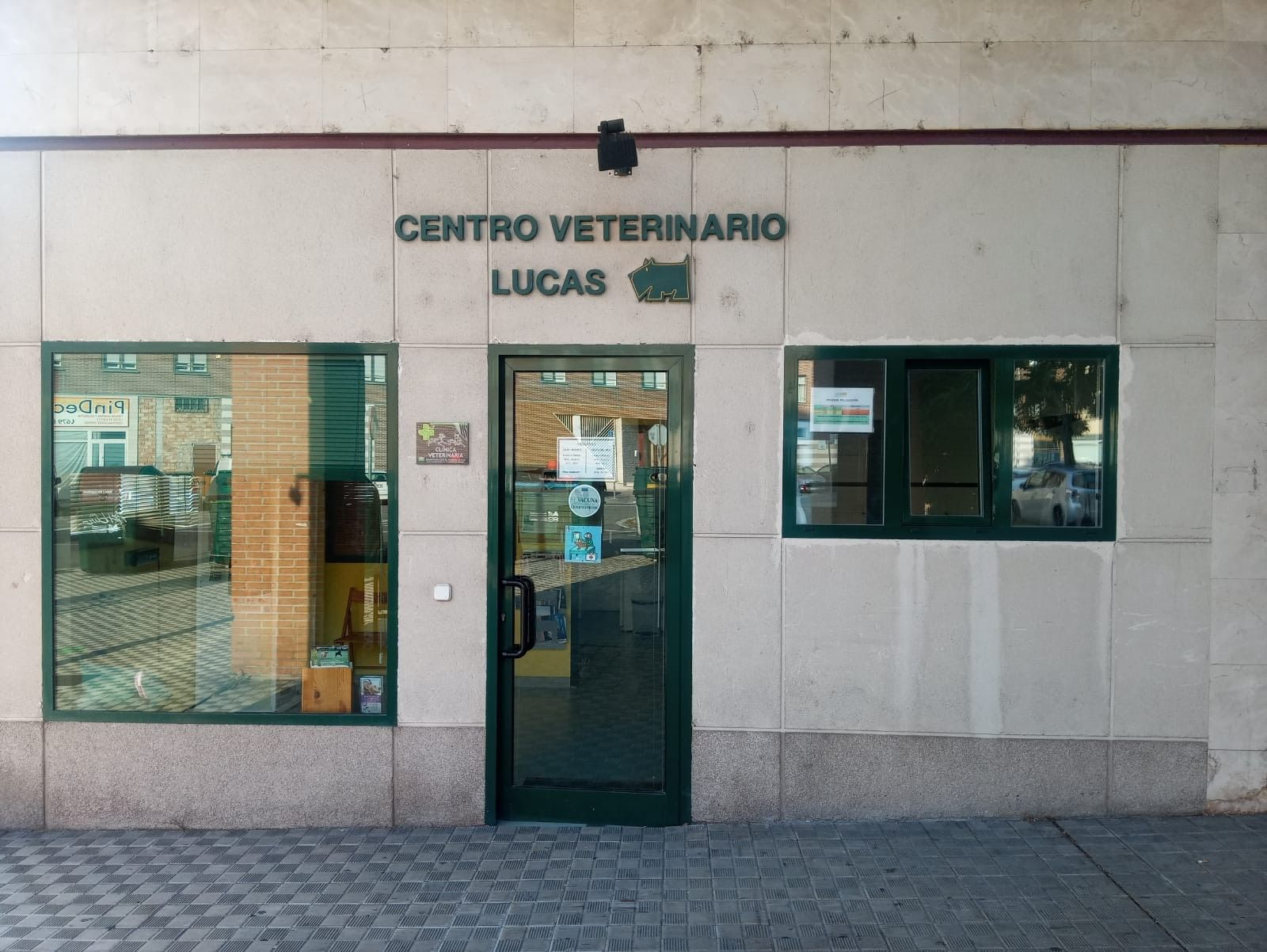 Clínica veterinaria y peluquería felina y canina Burlada