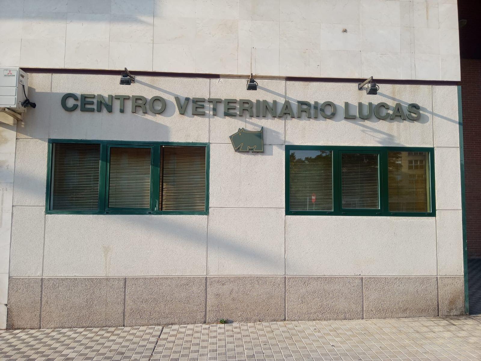 Centro Veterinario Lucas
