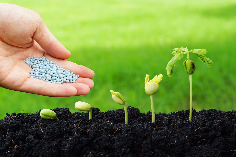 Venta de abonos, fertilizantes y agroquímicos
