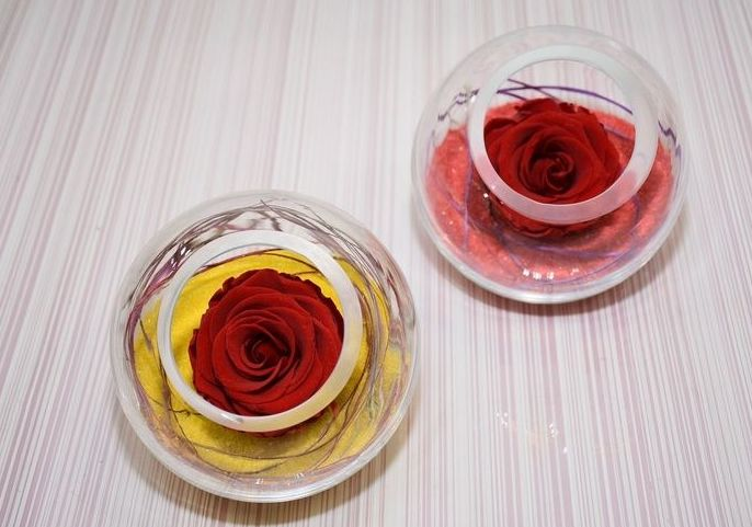 rosas eternas madrid