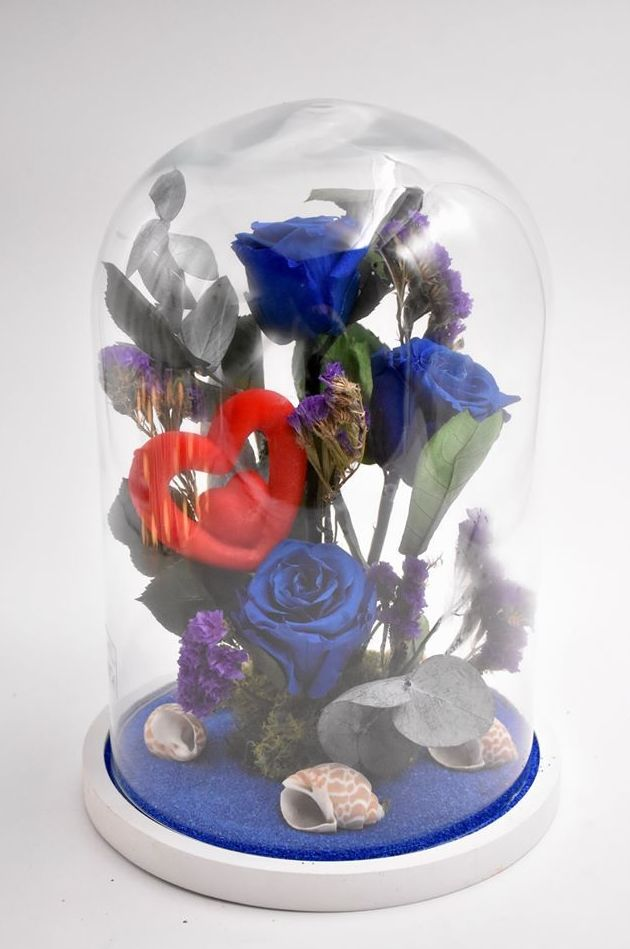 Cupula Bella y Bestia Mod:2 Azul oscuro