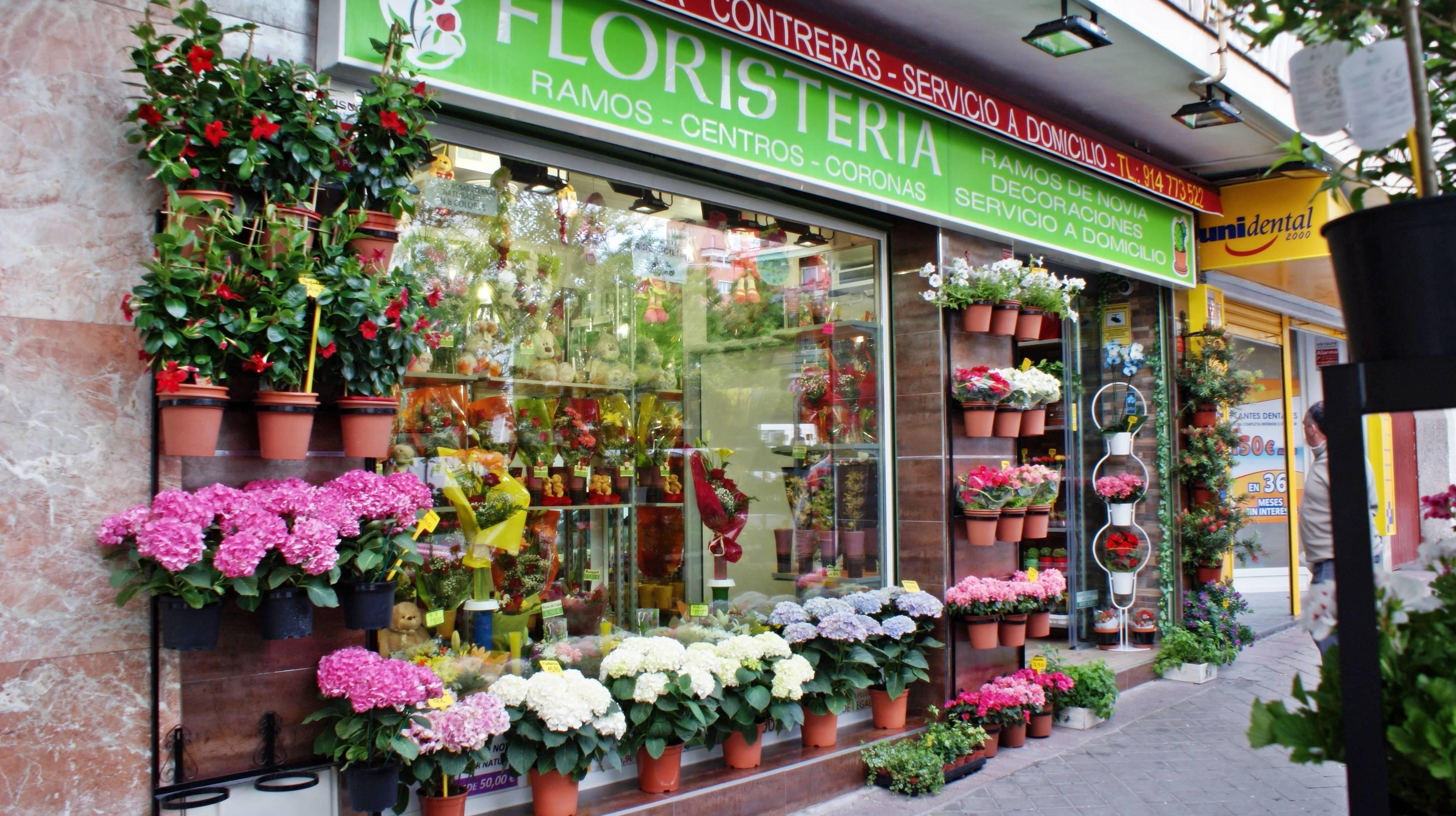 Foto 69 de Floristerías en Madrid | Floristería Contreras