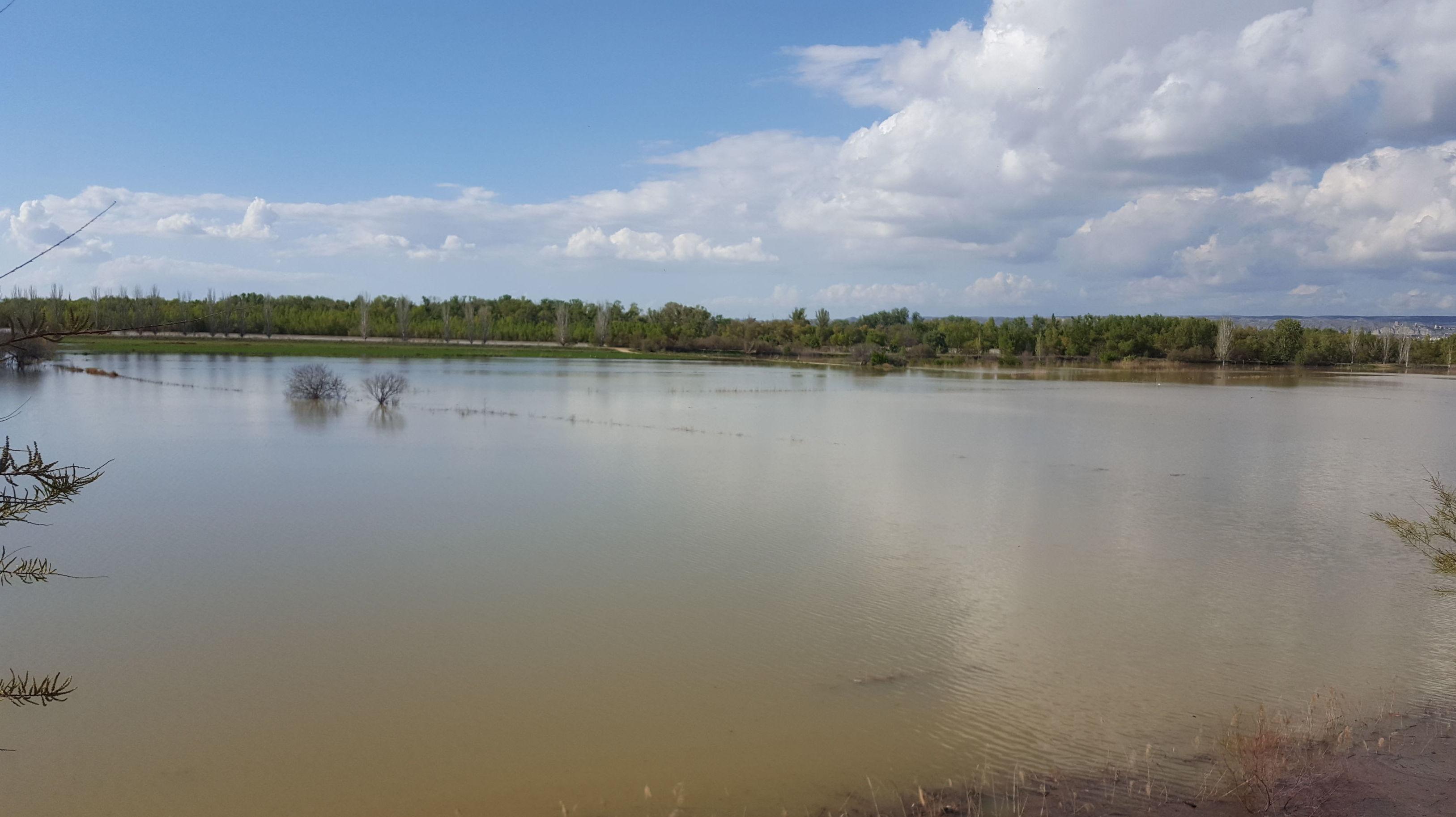 Avenida Ebro 2018. Valoración de daños por inundaciones. Asesores Rifaterra