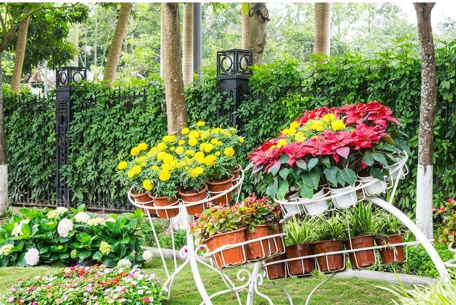 Mantenimiento de jardines: Servicios de Construcciones Trenc D'Auba