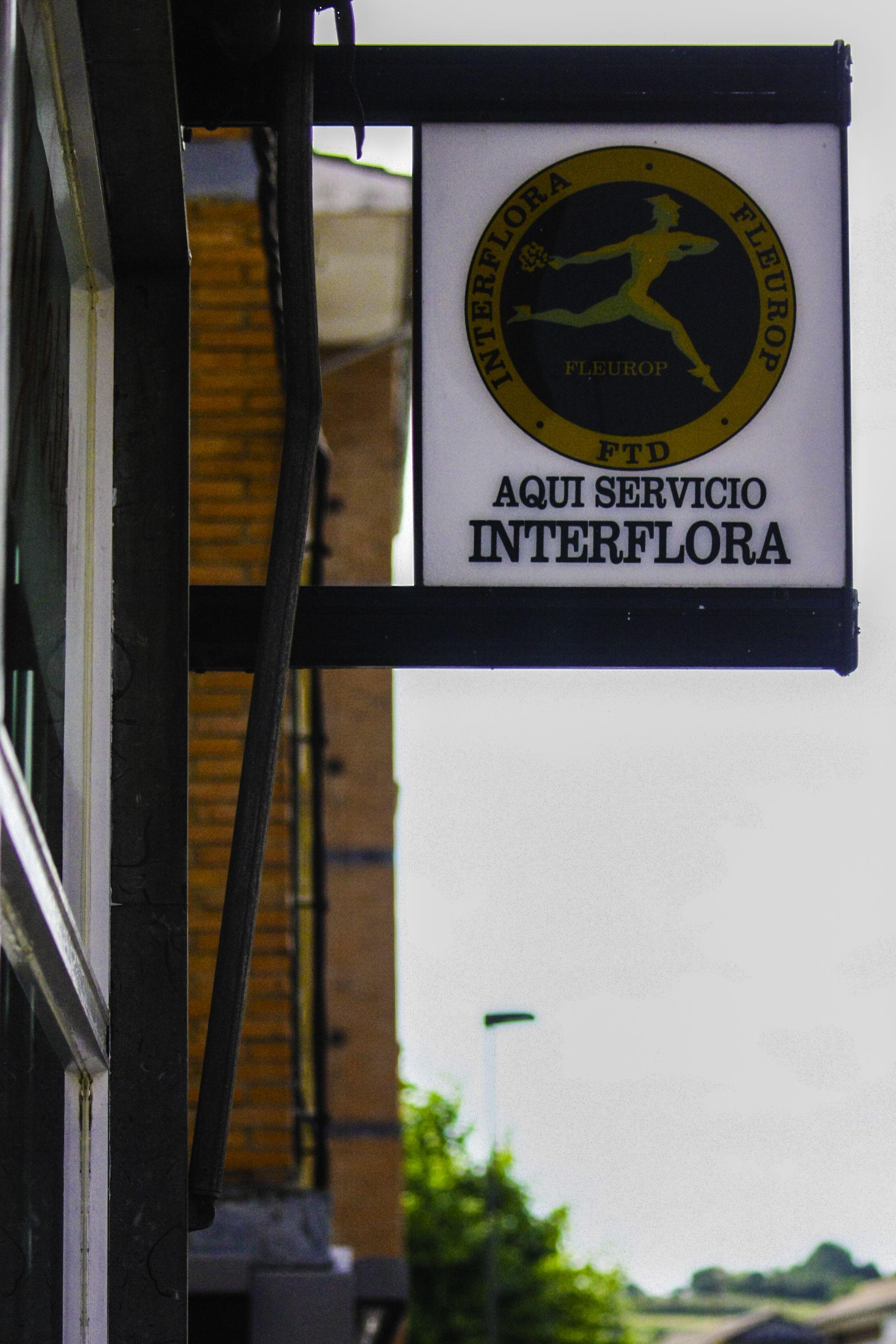 Foto 7 de Floristerías en  | Floristería Iglesias