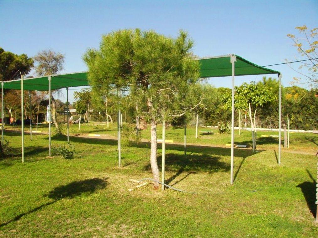Camping Faro Trafalgar parcela 25 m2